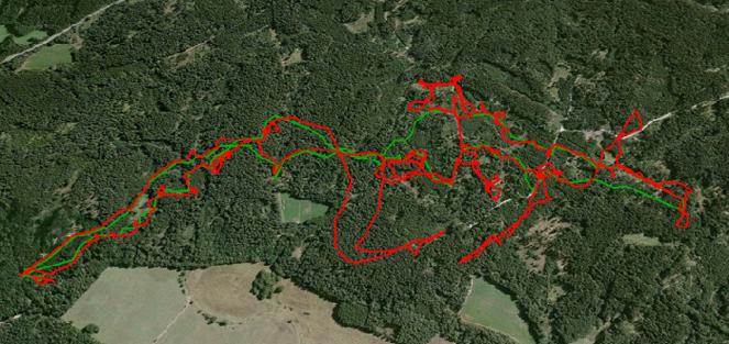 GPS obojky s navigací umožňují v průběhu celého lovu sledovat práci psů